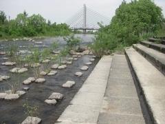 中の島側の河川敷からのミュンヘン大橋。2010年6月撮影